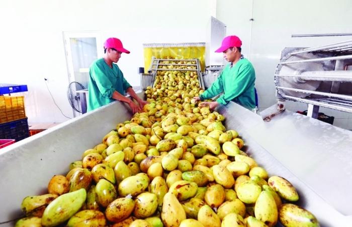 Vừa đạt hơn 41 tỷ USD, xuất khẩu nông sản