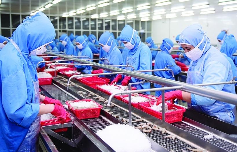 Mở rộng vùng xanh, doanh nghiệp phục hồi nhanh