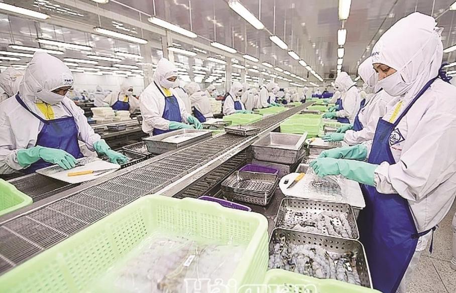 Doanh nghiệp thủy sản chống dịch nghiêm ngặt, duy trì đơn hàng xuất khẩu