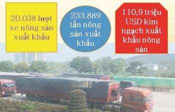 Lào Cai:  Giải pháp mới để khơi thông  hoạt động xuất nhập khẩu