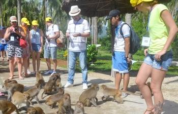 Đảo khỉ nghìn con
