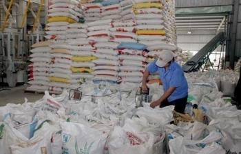 Gạo ST24 của Sóc Trăng được công nhận là gạo ngon nhất thế giới