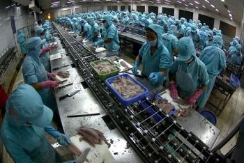 3 nguyên nhân khiến xuất khẩu cá tra sang Trung Quốc tăng đột biến