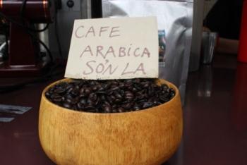 Cà phê Sơn La được bảo hộ chỉ dẫn địa lý