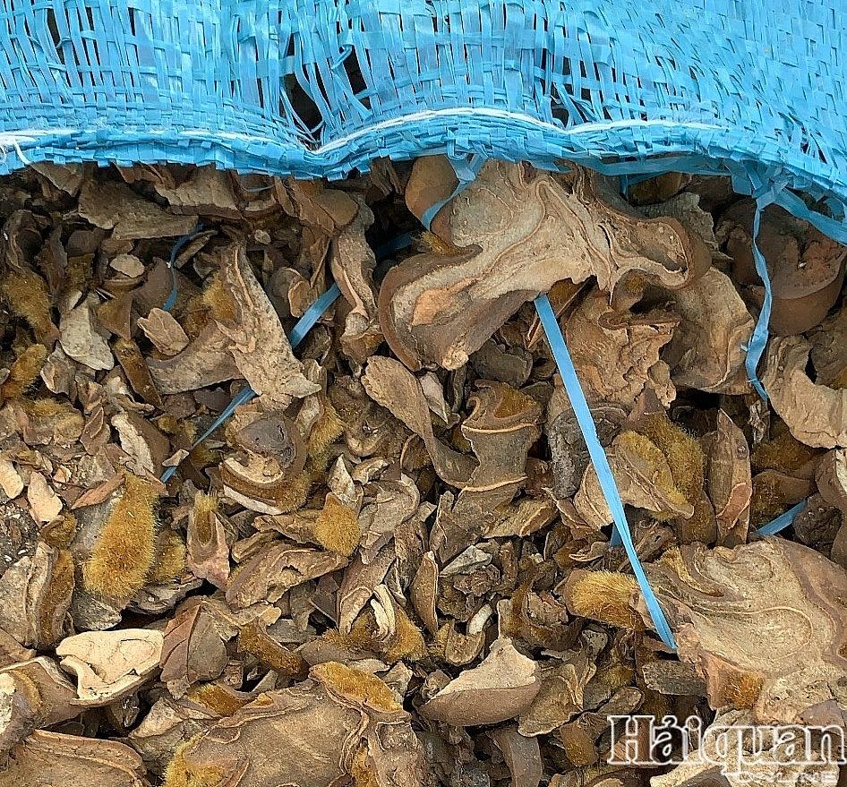 Bắt gần nửa triệu bao thuốc lá ngoại và hàng chục tấn nghi dược liệu tại Móng Cái