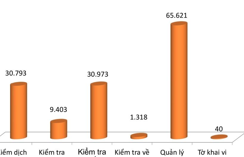 138 nghìn tờ khai nhập khẩu diện kiểm tra và quản lý chuyên ngành tại Hải quan Hải Phòng