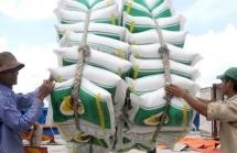 Giữ nguyên đề nghị xuất khẩu 400.000 tấn gạo trong tháng 4