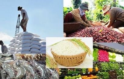 """""""Bí quyết"""" xuất khẩu thành công nông sản sang EU"""
