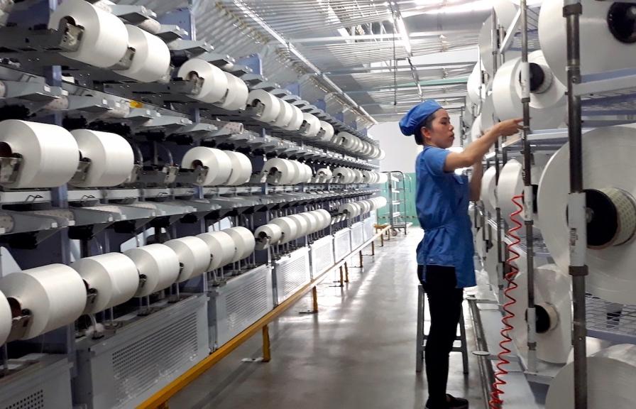 Sợi thế kỷ tăng trưởng trở lại nhờ sợi tái chế