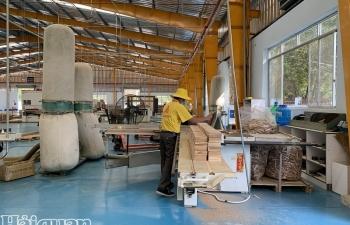 Gần nửa lao động tại các doanh nghiệp gỗ mất việc do dịch Covid-19