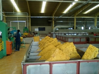 Cơ cấu sản phẩm cao su xuất khẩu chưa đáp ứng nhu cầu thị trường