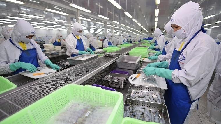 Nhờ EVFTA, xuất khẩu tôm tăng trưởng hai con số