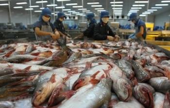WB: Việt Nam cần cải cách quyết liệt để nhận đầy đủ lợi ích  từ EVFTA