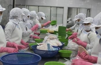 Doanh nghiệp tranh thủ thời cơ xuất khẩu tôm