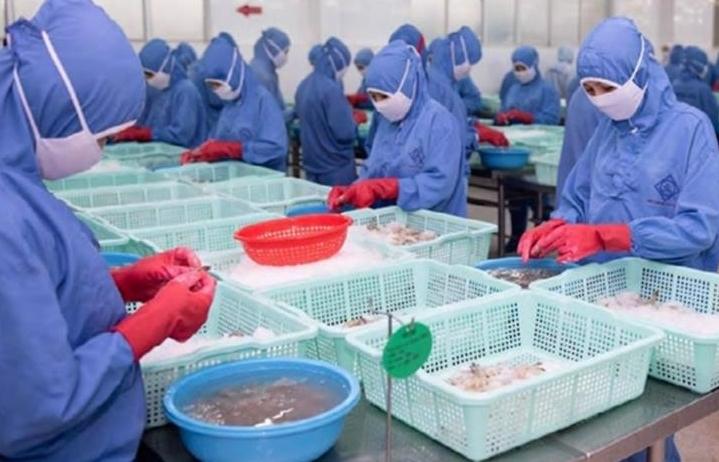 Xuất khẩu thủy sản tăng trưởng ở thị trường ngách