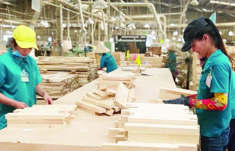 """Chính thức cấp giấy phép FLEGT, gỗ Việt """"rộng cửa"""" vào EU"""