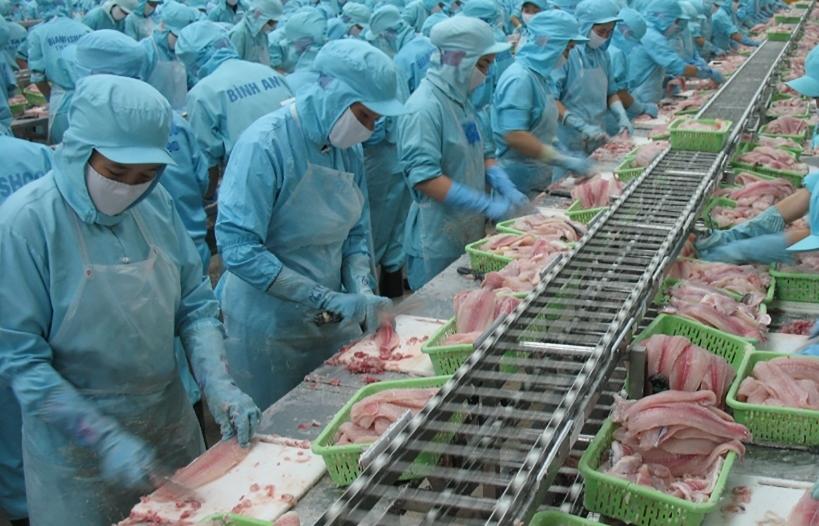 Theo dõi, xử lý ách tắc thuỷ sản xuất khẩu sang Trung Quốc