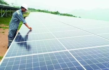 Thủ tướng: Chuyển sang cơ chế đấu thầu dự án điện mặt trời