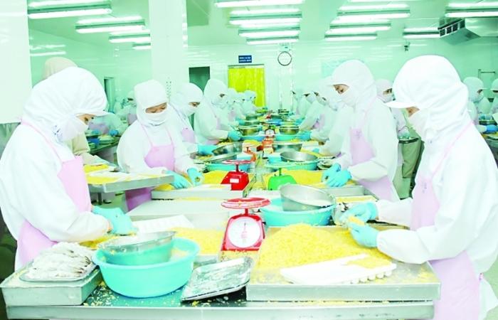 Ách tắc hàng hoá, xuất khẩu cá tra vào Trung Quốc giảm sâu