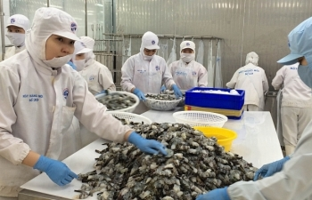 TPHCM: Xuất khẩu của doanh nghiệp FDI giảm sâu