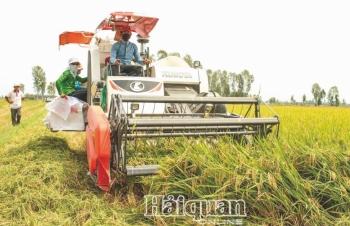 Nông nghiệp Việt Nam:  Một năm vượt