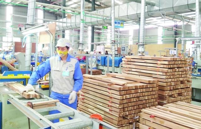 Đảm bảo tính hợp pháp gỗ nhập khẩu là vấn đề sống còn của ngành gỗ