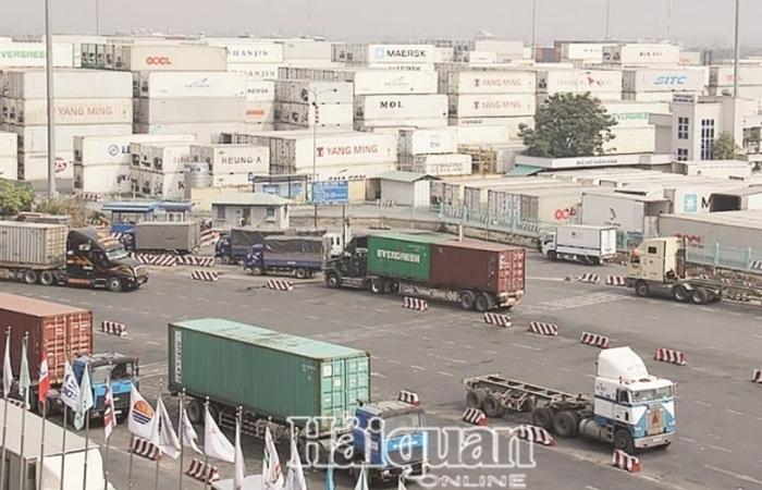 Bán đấu giá hàng trăm vỏ container rỗng