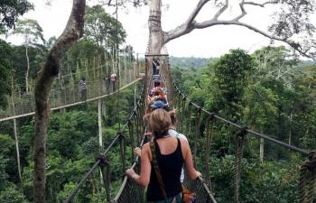 10 cây cầu đáng sợ không ai muốn đi qua