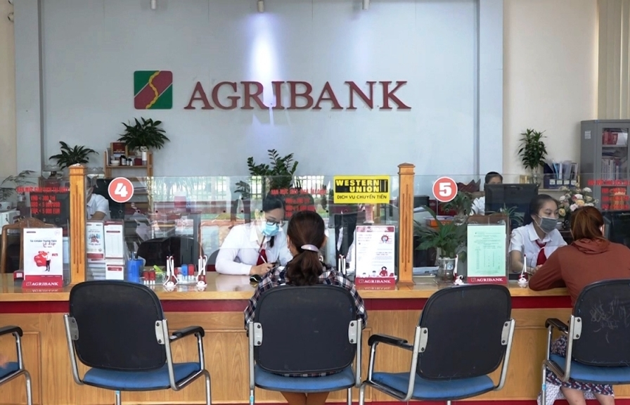 Agribank tiếp sức hộ sản xuất, doanh nghiệp vững tin vượt qua đại dịch