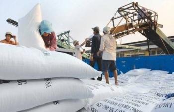 Khó khăn chất chồng, xuất khẩu gạo vẫn