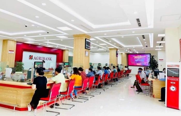 Agribank giảm thêm lãi suất cho vay hỗ trợ khách hàng tại 19 tỉnh thành phía Nam