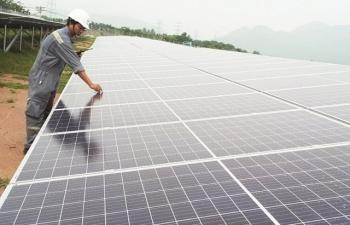 EVN đề xuất 3 phương án đấu thầu dự án điện mặt trời