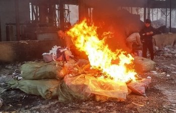 Tiêu hủy 853 kg dược liệu Trung Quốc nhập lậu
