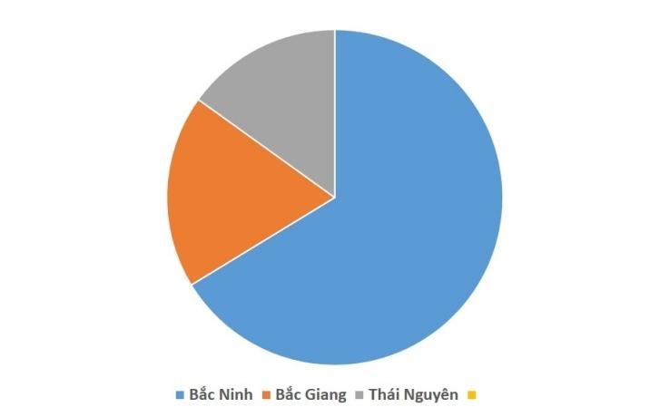 Hải quan Bắc Giang thu ngân sách đạt 350 tỷ đồng