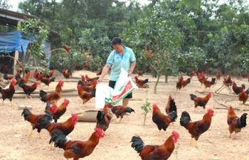 Sắp có biểu mức thu phí trong lĩnh vực chăn nuôi