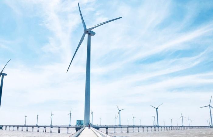 Hải quan Cà Mau thu ngân sách tăng hơn 1.600% nhờ các dự án điện gió