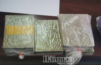 Hải quan Nghệ An phối hợp bắt gần 1,8 kg ma túy