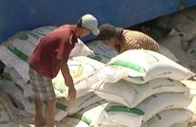 Dùng dằng, Việt Nam có thể mất cơ hội xuất khẩu gạo giá cao