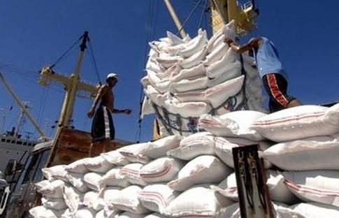 Kém cạnh tranh hơn Thái Lan, Ấn Độ, xuất khẩu gạo cán đích khoảng 3,2 tỷ USD