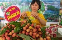 Chuyên gia Nhật đã đến Việt Nam, vải thiều Việt sắp sửa xuất đi Nhật