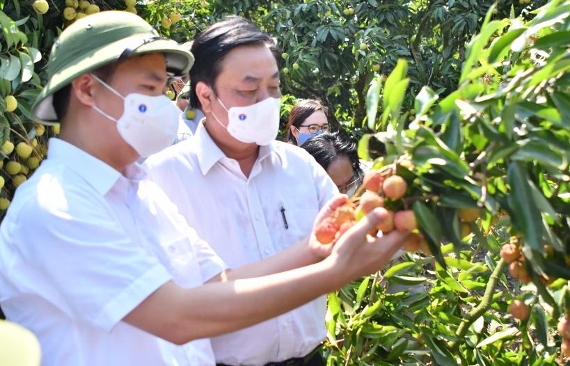 Bộ NN&PTNT đề nghị 6 bộ cùng vào cuộc gỡ khó tiêu thụ nông sản
