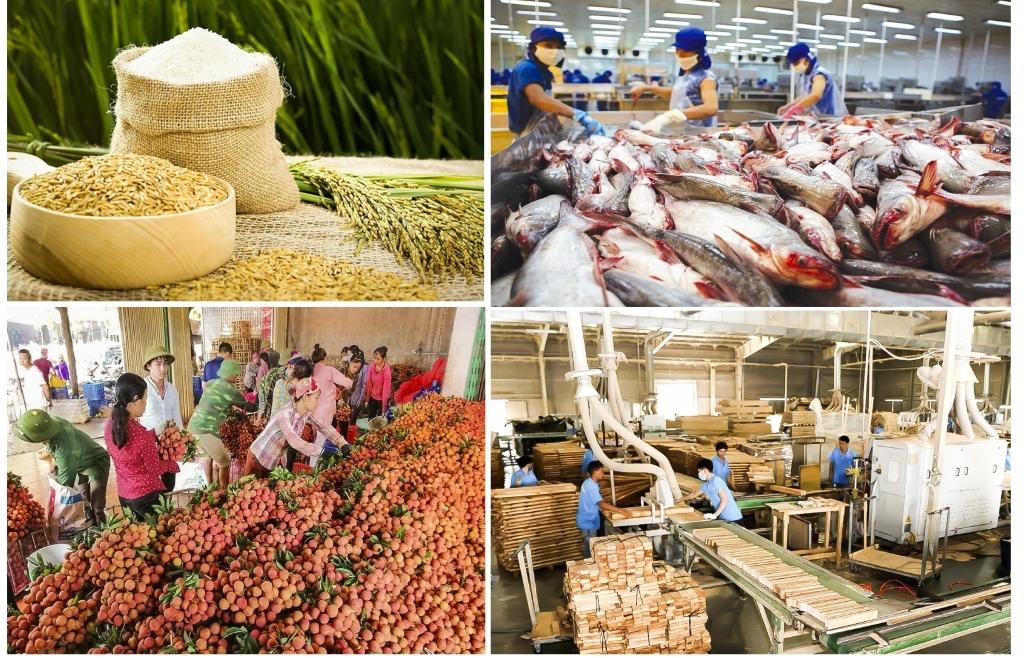 Năm 2021 xuất khẩu nông sản đạt 44 tỷ USD ?