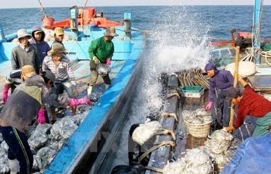 Vùng đánh cá chung Việt Nam-Trung Quốc hết hiệu lực
