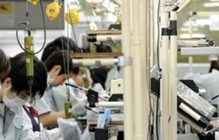 8 doanh nghiệp bị loại khỏi danh sách phái cử thực tập sinh sang Nhật Bản
