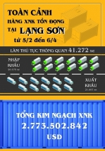 Infographics: Toàn cảnh hàng xuất nhập khẩu tồn đọng tại Lạng Sơn