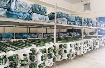 Xuất cấp 2.600 bộ nhà bạt dự trữ để thực hiện nhiệm vụ phòng, chống dịch Covid-19