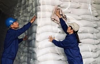 Chuyển công an điều tra các sai phạm liên quan đến gạo dự trữ