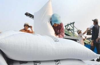 Hải quan hỏa tốc hướng dẫn xuất khẩu gạo nếp