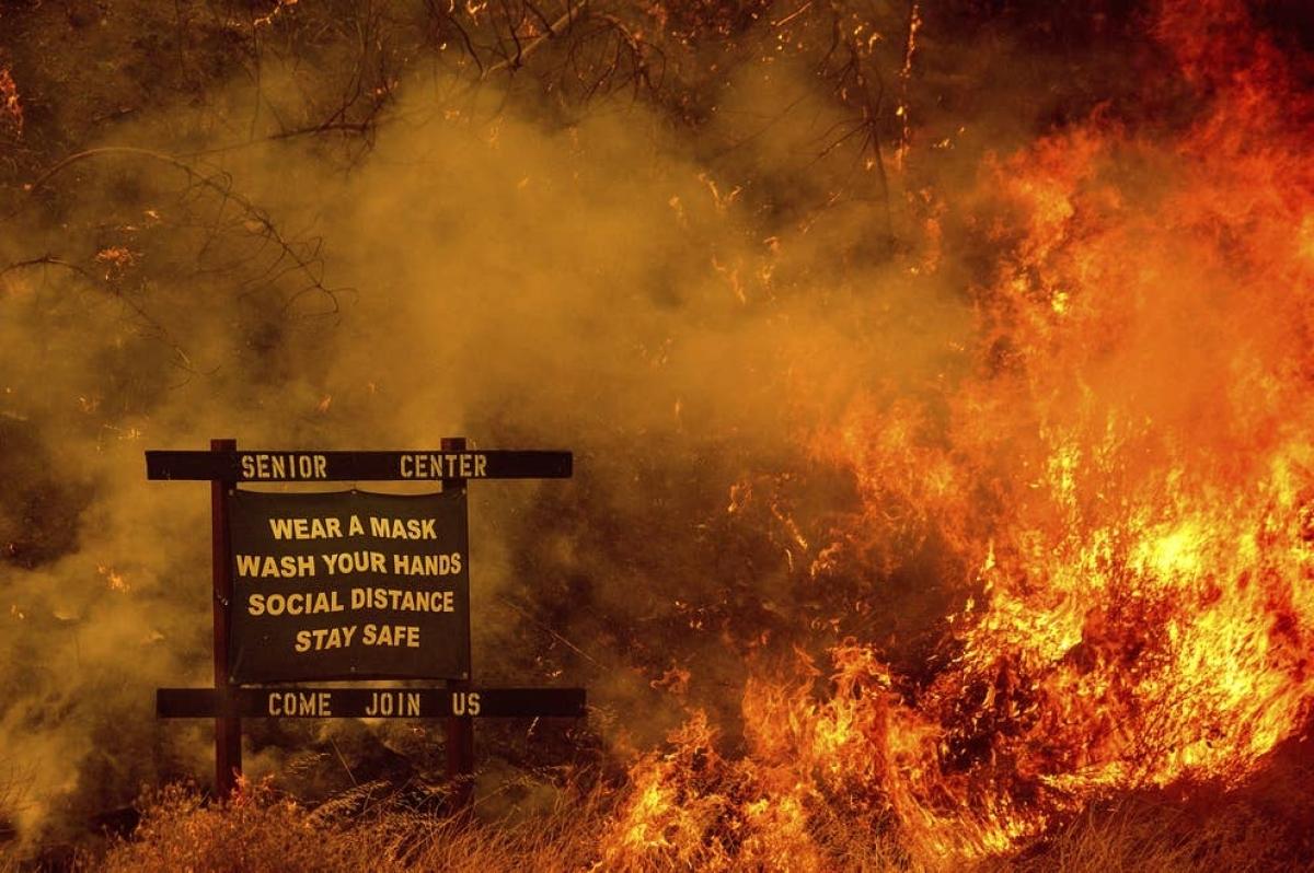 Cháy rừng tại bang California, Mỹ. Ảnh: AP